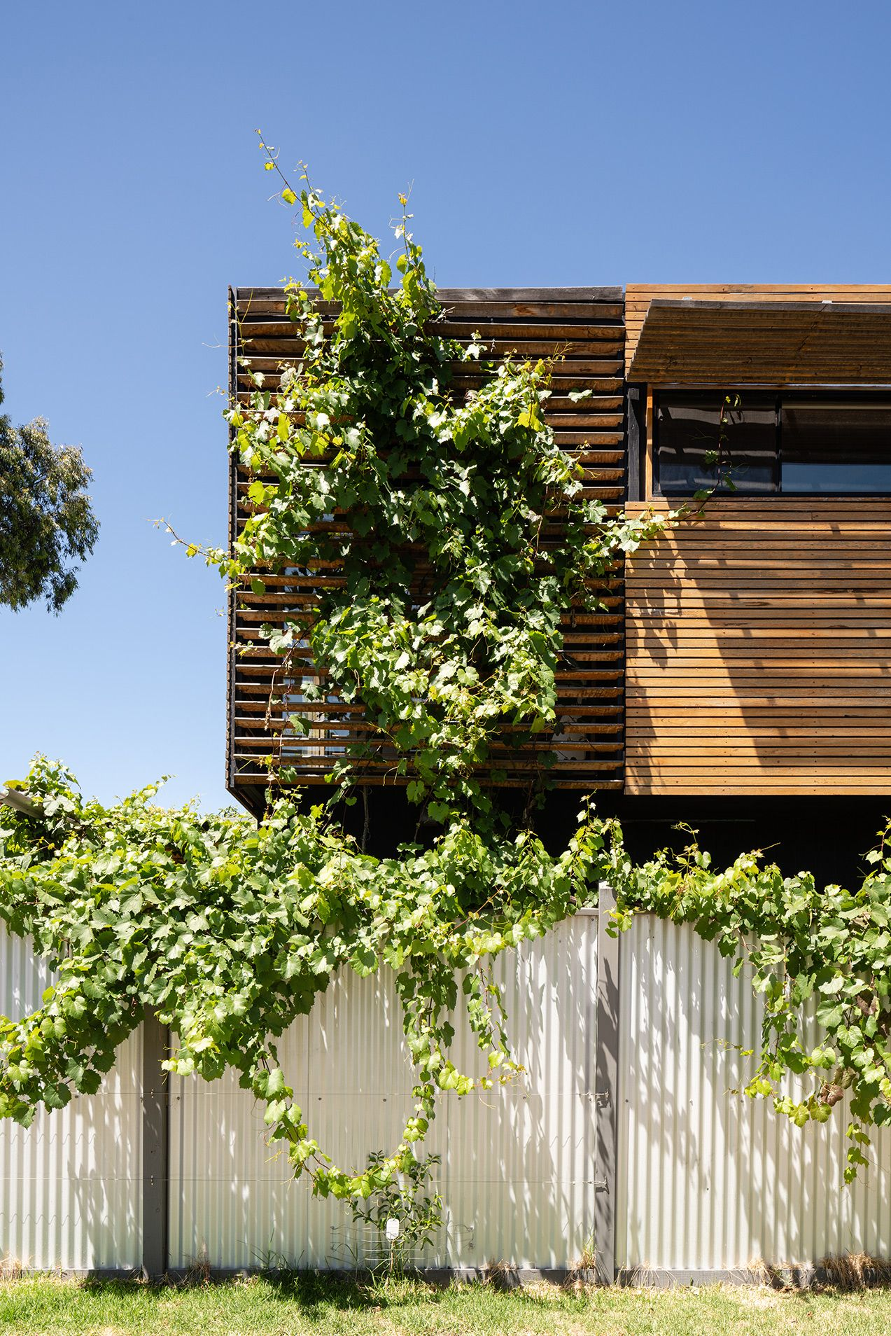 https://www.bencallery.com.au/wp-content/uploads/2015/05/42_-Callery-House-Ben-Callery-Architects-high-res-14.jpg